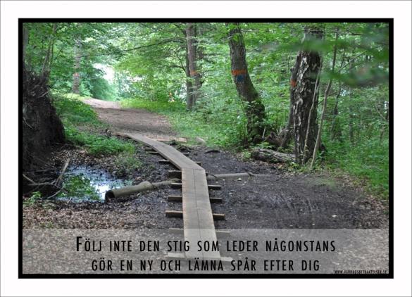 följ inte den stig