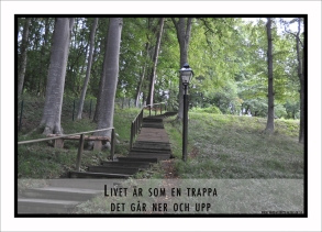 trappa
